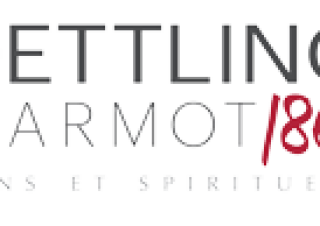 D&M-Logo-web